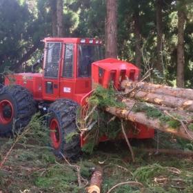PHILIPP ForstWerkzeuge NORDCHAIN Forst Schneeketten für Harvester Forwarder/Harvester