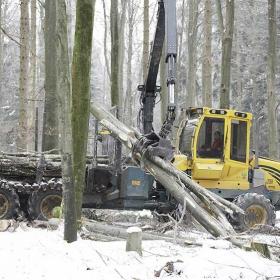 PHILIPP ForstWerkzeuge HULTDINS SuperGrip 360-S nach 8.500 Arbeitsstunden