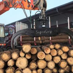 PHILIPP ForstWerkzeuge HULTDINS Holzgreifer SuperGrip I 360, 420, 520, 720-S-VMdie langlebigen Greifer für Bagger