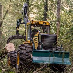 PHILIPP ForstWerkzeuge HULTDINS SuperGrip I 360, 420, 520, 720-S-VM stabile Greifer für starke Skidder