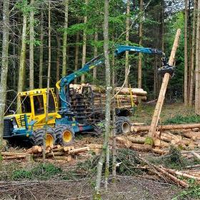 PHILIPP ForstWerkzeuge HULTDINS Holzgreifer SuperGrip 360 an 12t Ruecke