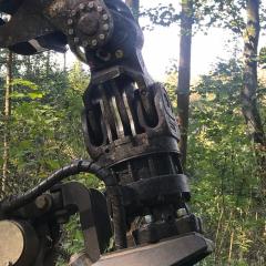 PHILIPP ForstWerkzeuge INDEXATOR Forst Rotator für Harvester H 172 3, 16000 Kg statische Last