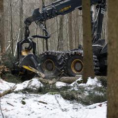 PHILIPP ForstWerkzeuge INDEXATOR Forst Rotator für Harvester für Harvester im Einsatz