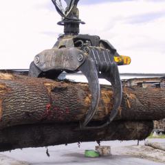 PHILIPP ForstWerkzeuge INDEXATOR Forst Rotatoren  GV 124 mit HULTDINS SuperGrip I