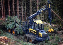 PHILIPP ForstWerkzeuge CLARK TRACKS Forstbänder Hangeinsatz, Climbing Extreme (CX)