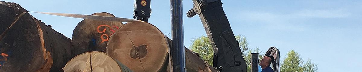 PHILIPP ForstWerkzeuge Pendel-Rotator-Greifer für LKW-Krane, HULTDINS, INDEXATOR, Pendel LKW-Kran, Rotator LKW-Kran, Greifer LKW-Kran